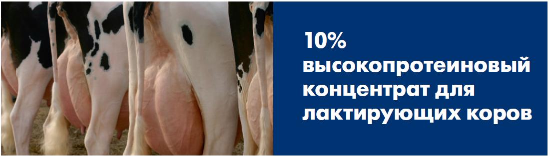 БМВК 10% для лактирующих коров