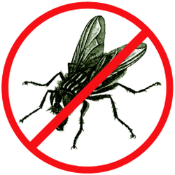 Борьба с личинками мух