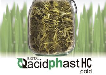 Биотал Асидфаст НС Голд_трудносилосуемые травы и с повышенной влажностью