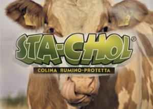 СТА-ХОЛ гепатопротектор для коров